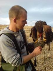 Gary with male Harris Hawk